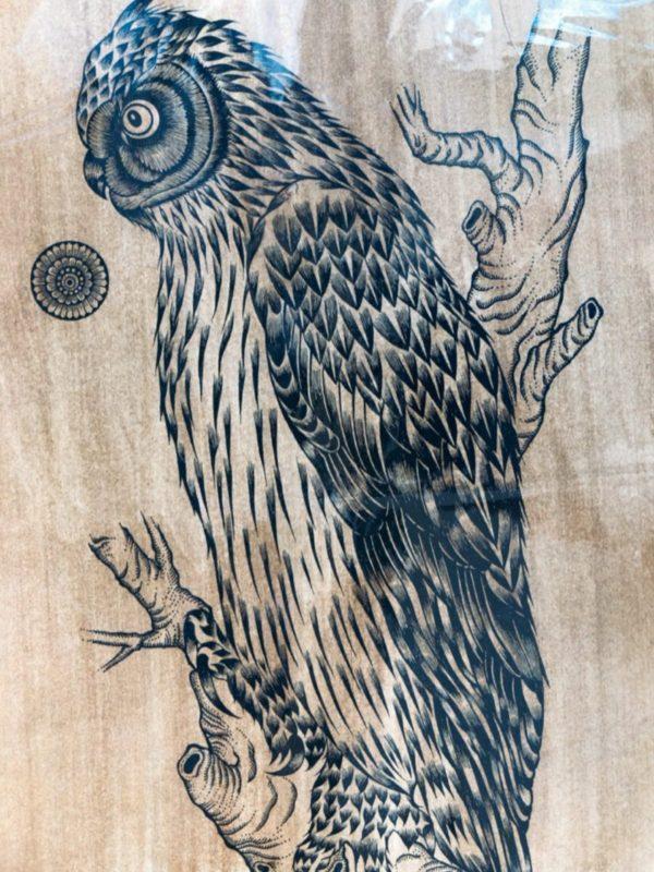 フクロウの版画