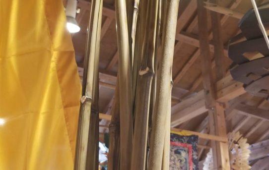 バリ島の旗ウンブルウンブル用の竹入荷しました。