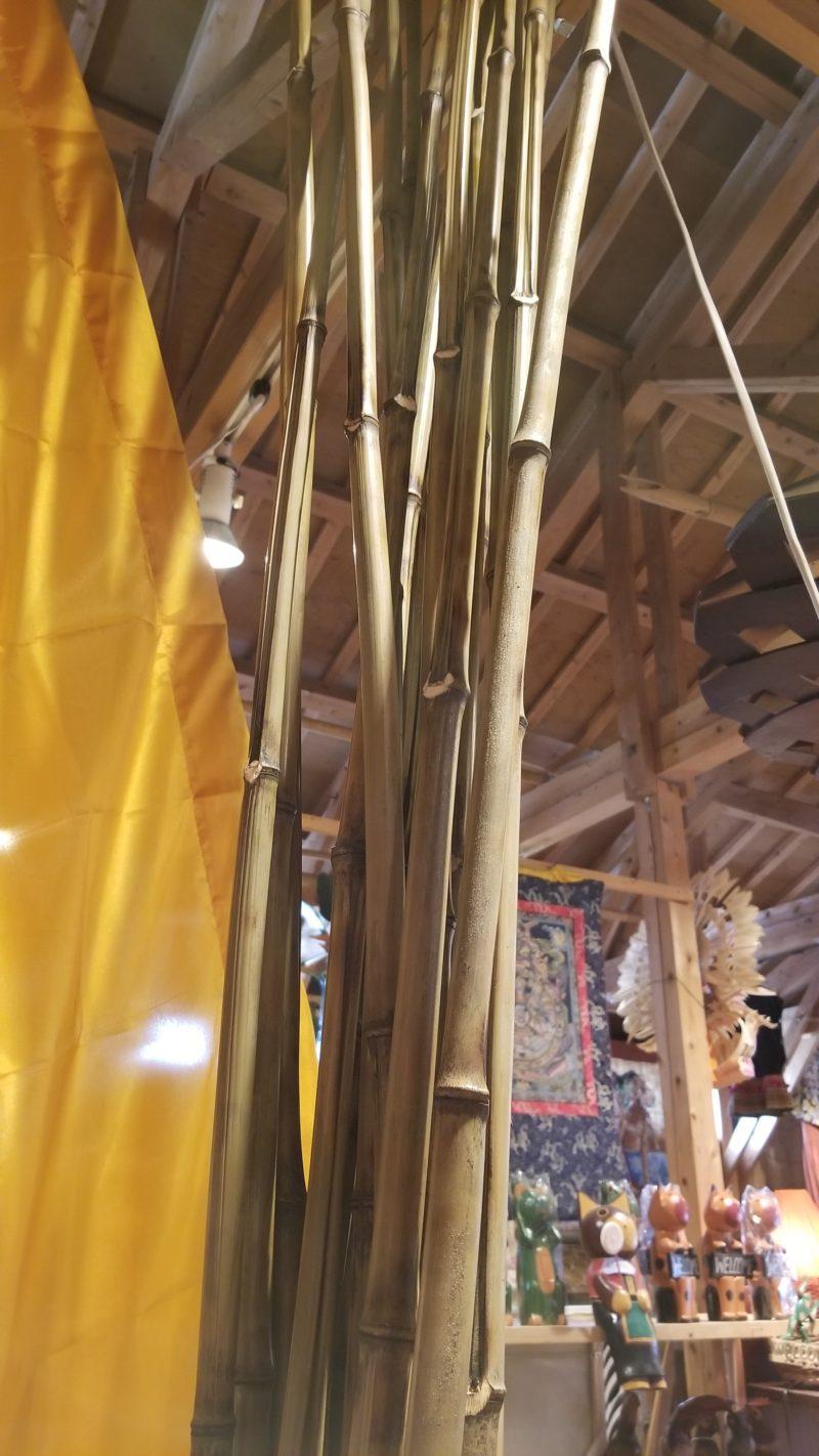 ウンブルウンブルの竹
