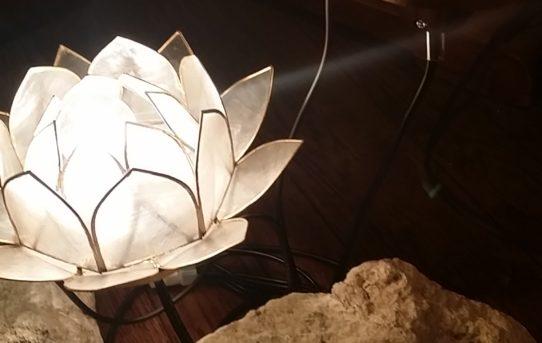 カピス貝の蓮の花ランプの新作
