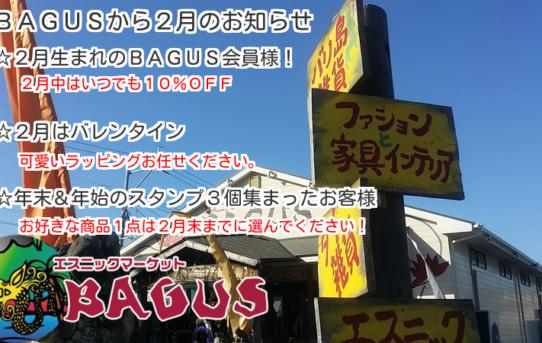 2月のBAGUSからのお知らせ!