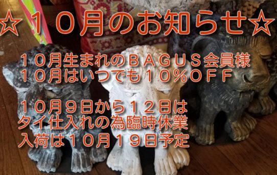 BAGUSから! 10月のお知らせです。