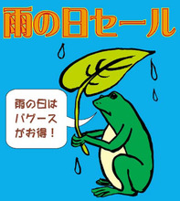 11月8日土曜日~雨降ってきました。「雨の日セール」スタート