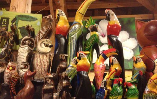 ★オススメアイテムのご紹介♪ 「密かな人気アイテム!木彫南国鳥さん」♪♪